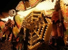 Sidmouth Carnival_4