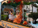 Sidmouth Carnival_28