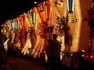 Sidmouth Carnival_63