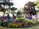 Sidmouth Folk Week 2014_18