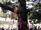 Sidmouth Folk Week 2014_19
