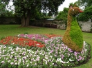 Sidmouth in Bloom